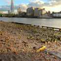 River Thames at low tide